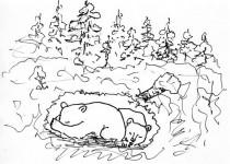 Игра на английском Где живут животные