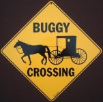 Buggy Сrossing