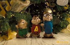 Chipmunk gift