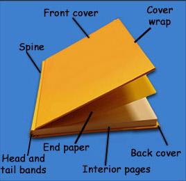 Анатомия книги