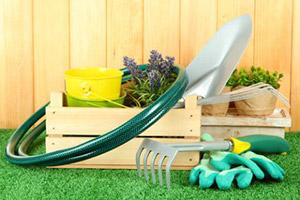 Все, что нужно знать об огородничестве и садоводстве на английском языке
