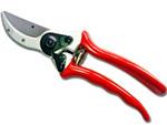 Pruners - садовые ножницы